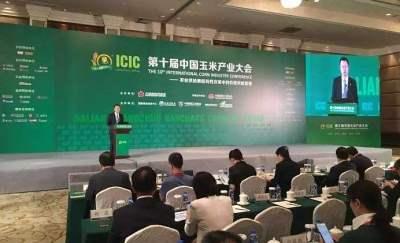 王玉飞:制度创新持续推进 期货服务玉米产业前景广阔